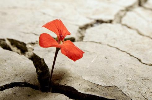 autostima atteggiamento mentale e resilienza